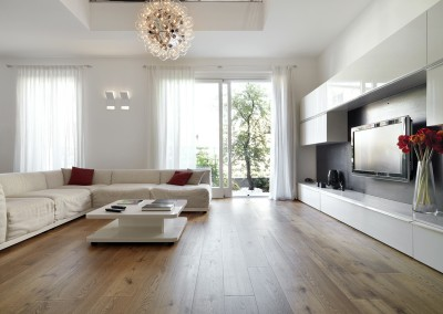 Modern living room with wood floor interior design